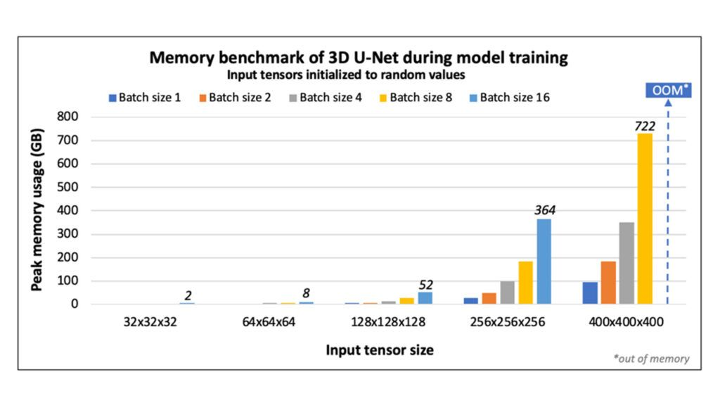 Addressing the Memory Bottleneck in AI Model Training