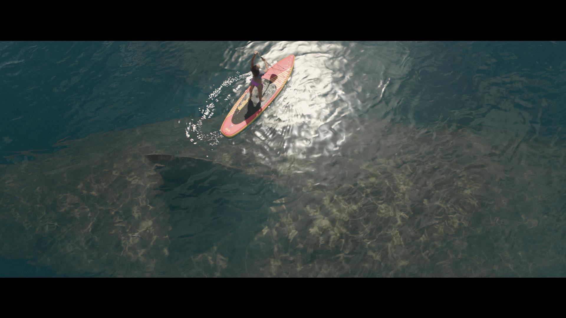 Meg Trailer 48