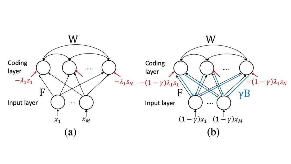 Sparse Dictionary Learning by Dynamical Neural Networks