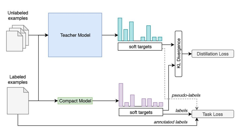 Training Compact Models for Low Resource Entity Tagging using Pre-trained Language Models