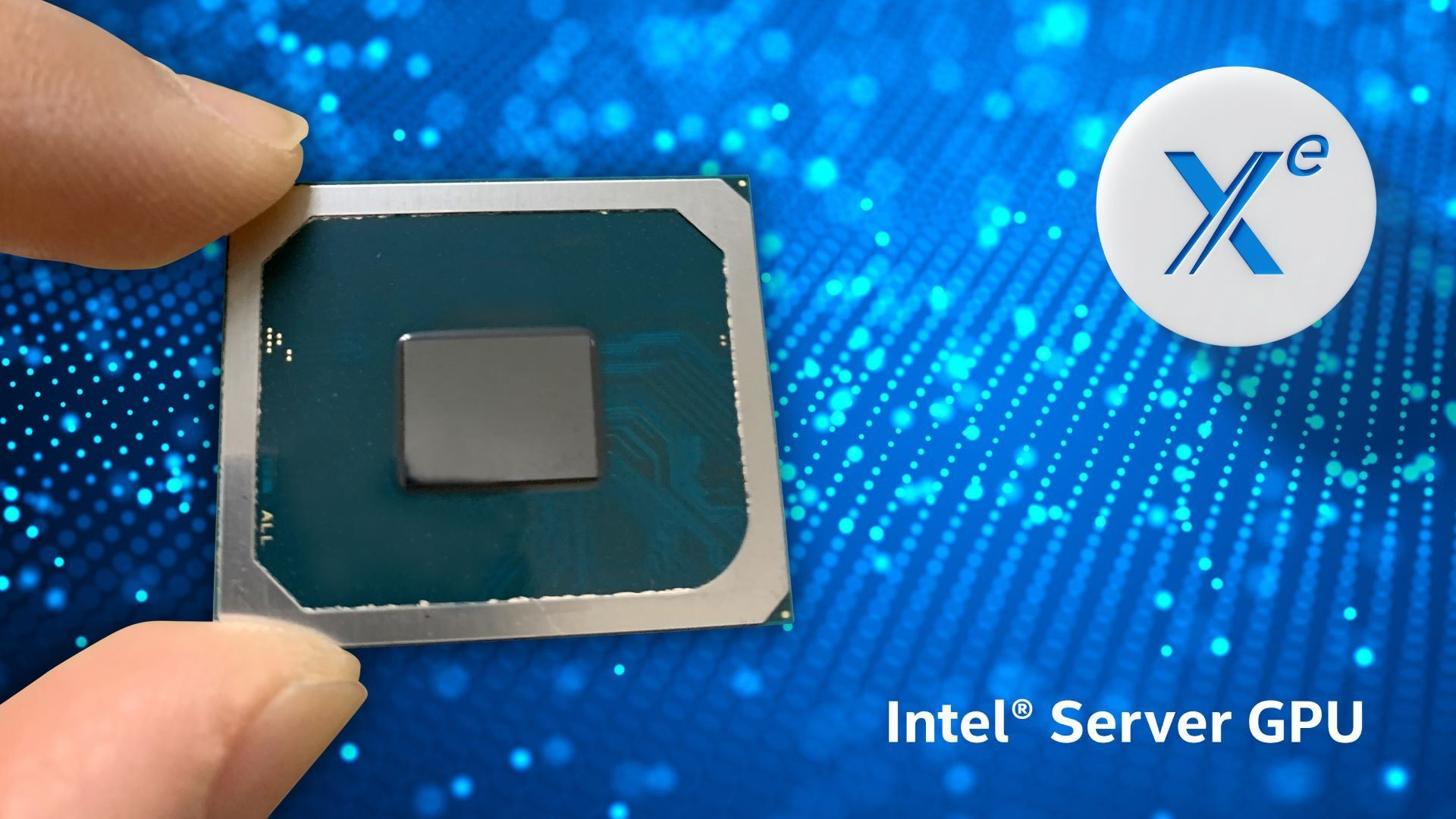 Product image of the Intel Server GPU held between two fingers