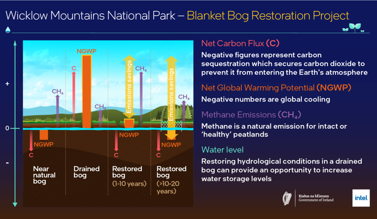 NPWS and Intel launch bog restoration project – GRAPHIC 1