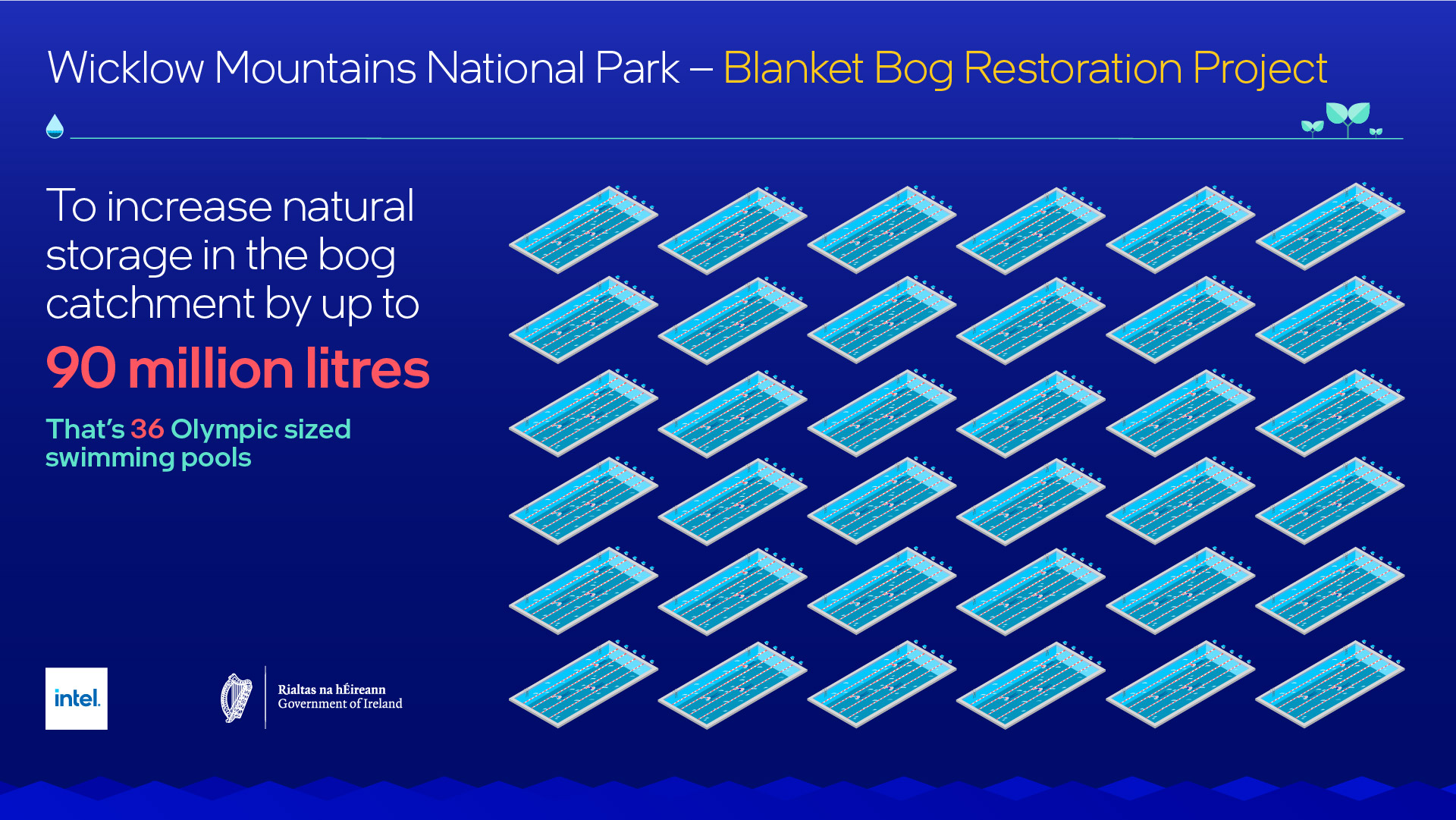 NPWS and Intel launch bog restoration project – GRAPHIC 2
