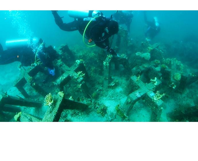 [사진자료 2] 인공 콘크리트 산호초는 불안정한 산호 조각들을 단단하게 지지해준다. 이는 인텔, 액센츄어, 술루바이 환경재단이 함께 만든 것으로  필리핀 판가탈란 섬 주변의 산호초를 위한 것이다.
