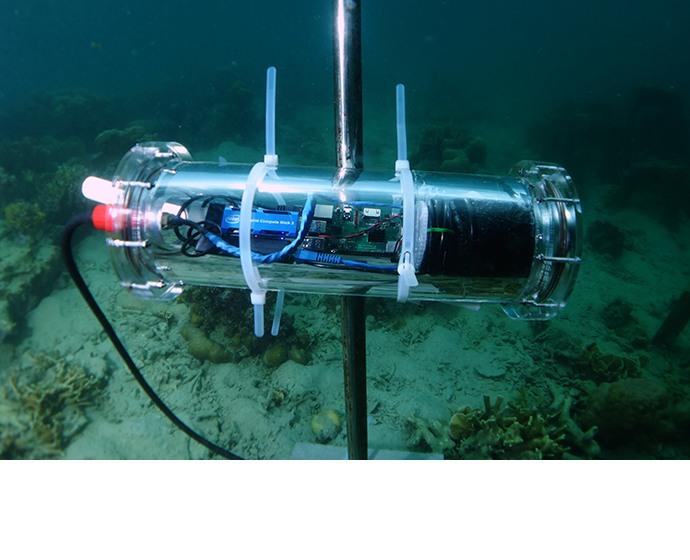 [사진자료 3] 지능형 수중 카메라로 물고기를 탐지, 촬영, 분류해  인텔, 액센츄어, 술루바이 환경재단은 필리핀 판가탈란 섬 주변의 산호초를 재건하는데 있어  데이터 중심의 의사 결정을 내릴 수 있다.