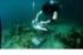 An intelligent underwater video camera to detect, photograph and
