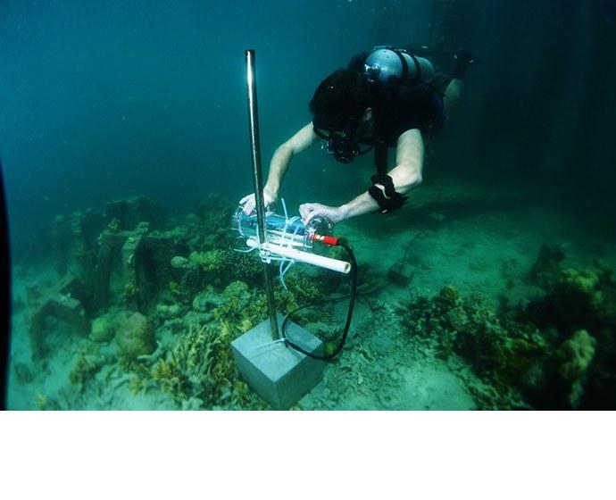 [사진자료 4] 지능형 수중 카메라로 물고기를 탐지, 촬영, 분류해 인텔,액센츄어,술루바이 환경재단은 필리핀 판가탈란 섬 주변의 산호초를 재건하는데 있어데이터 중심의 의사 결정을 내릴 수 있다