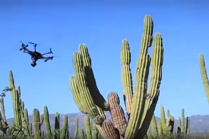 Intel® RealSense™ Technology Helps Drone Dodge Obstacles