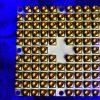 quantum qubit 2x1