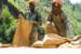 Miners employed by Rutongo Mines Ltd., north of Kigali, Rwanda,