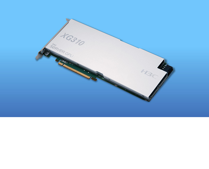Intel H3C XG310 PCIe card 2